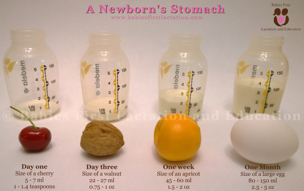 newborn-stomach-small